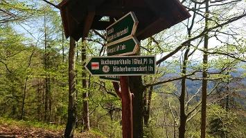 Foto Wegweiser zur Buchenparkhalle nach Hinterhermsdorf