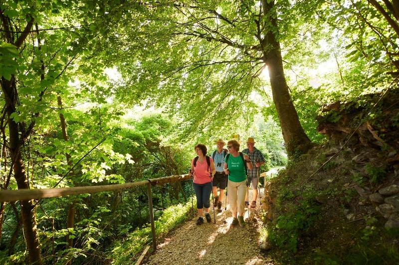 Wanderer auf dem Homburg-Steig