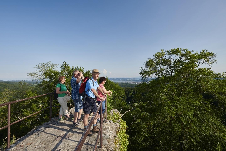Aussichtsturm der Homburg