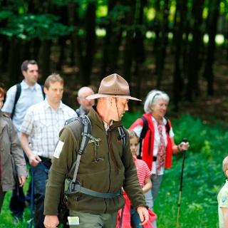Geführte Wanderung im Nationalpark Nordeifel