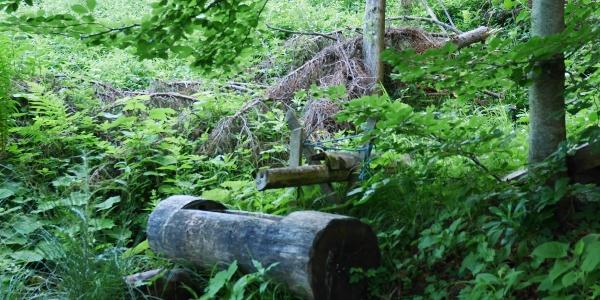 ein kleines Rinnsal an Wasser floss in den Brunnen
