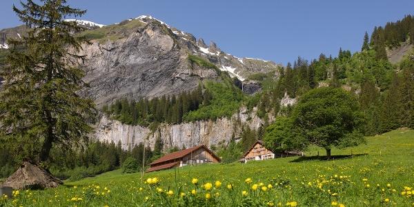 Alp Walabütz