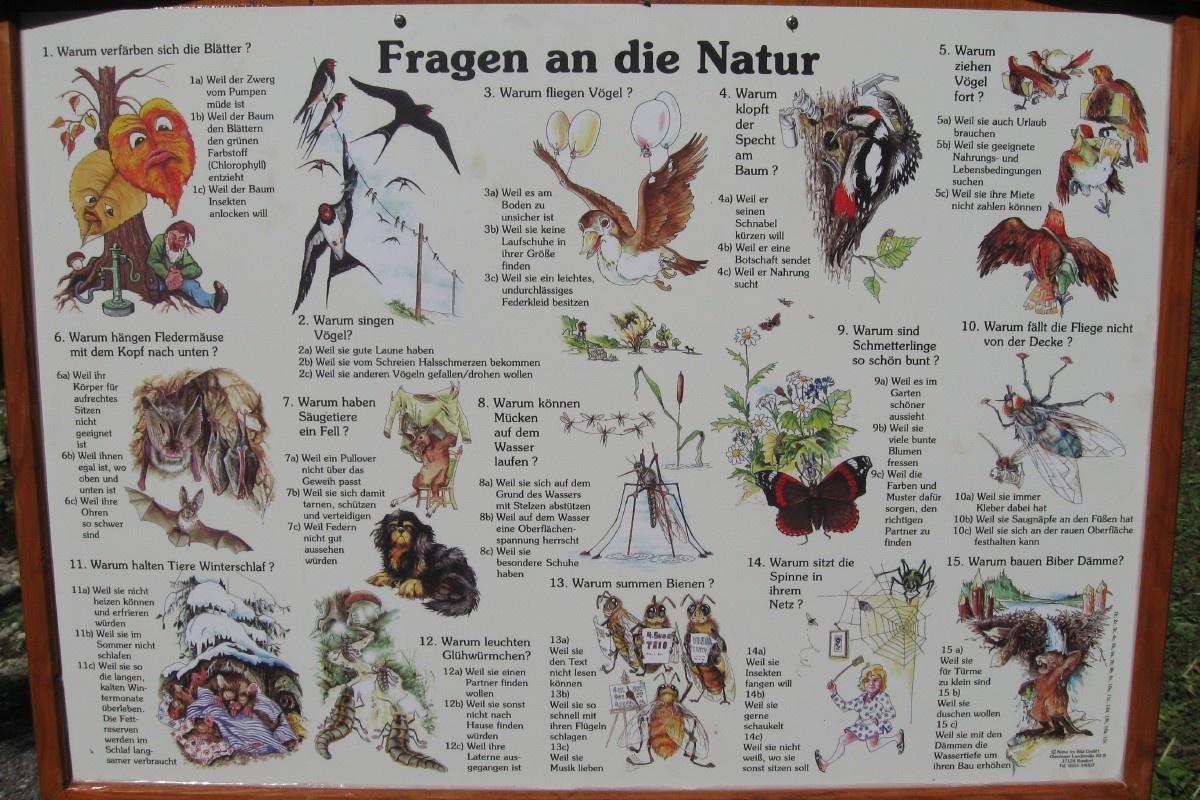 Übersichtstafel Naturerlebnispfad Brannenburg