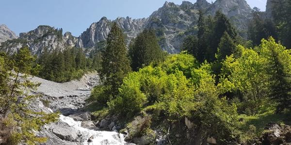 Wildbach im Wäldeletobel