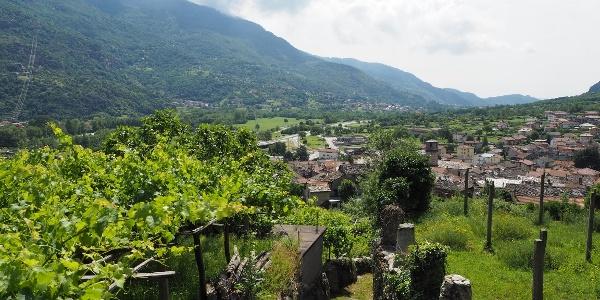 Durch die Weinberge hinter Quincinetto