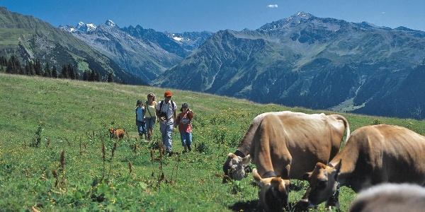 Ausgangspunkt Saaser Alp Madrisa