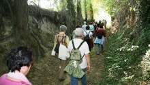 Hohlwegwanderung ab Bruchsal - Route 3