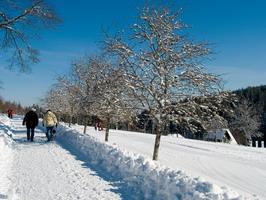 Winterwanderung zur Grünhütte