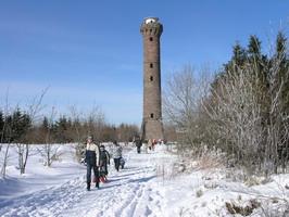Winterwanderung zum Hohloh und Kaltenbronn