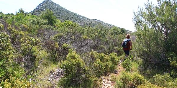 Der Berg Motokit noch weit über uns