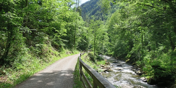 Radfahren entlang des Feistritztalradweges