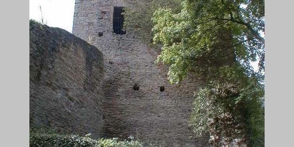 Ruine Altwolfstein