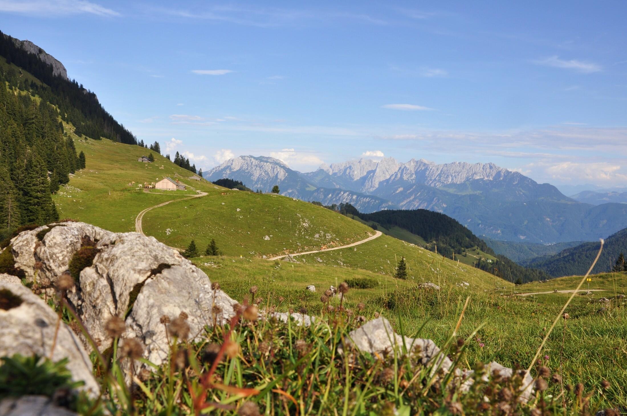 Himmelmoos Almen mit Aussicht Kaisergebirge