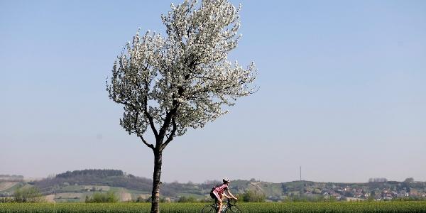 Die Landschaft per Rad genießen