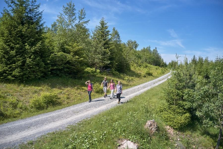 AugenBlick-Runde Bad Herrenalb Schweizerkopf