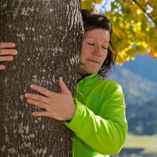terapia foresta