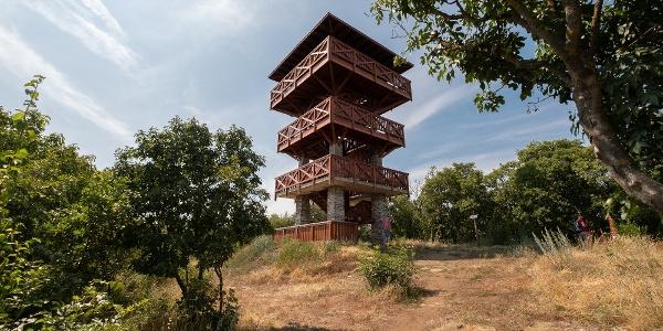 Rozhľadňa Strážna veža