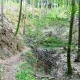Trail am Neunränklesweg