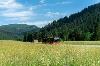 Der Tälerbus verbindet Pfronten & das Tannheimer Tal - @ Autor: Julian Knacker - © Quelle: Pfronten Tourismus