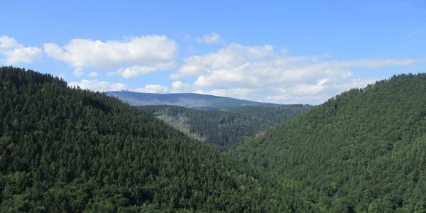 Vom Ilsestein bietet sich eine grandiose Sicht über die Harzer Wälder, bis hinauf zum Brocken.