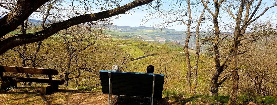 Traumschleifchen Pfalzblick - Auf'm Hinnerbeil - Blick auf Oberwesel und die Schönburg