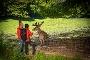 Zwei Wanderer füttern einen Hirsch im Tierpark Donsbach