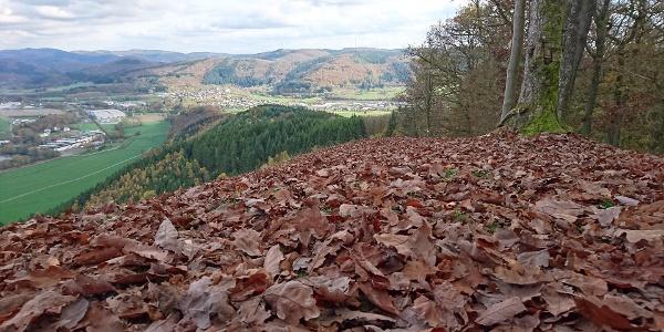 Aussicht vom Entenberg Bad Laasphe