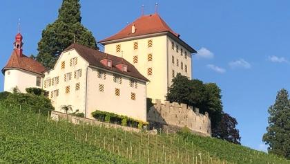 Schloss Heidegg, Gelfligen