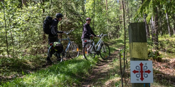 Most of the trails are good for sturdy bikes. Please see the descriptions for exceptions.
