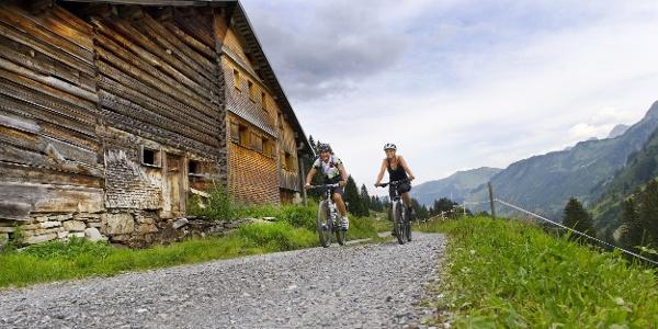 Mountainbiker in Damüls