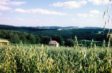 Fuchsberg - Jakobskapelle