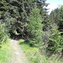 Flowige Trails im Nanztal