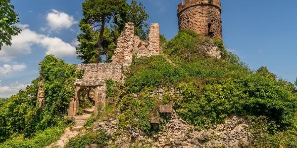Château du Haut-Ribeaupierre