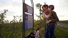 B7 Wein- und Apfelweg
