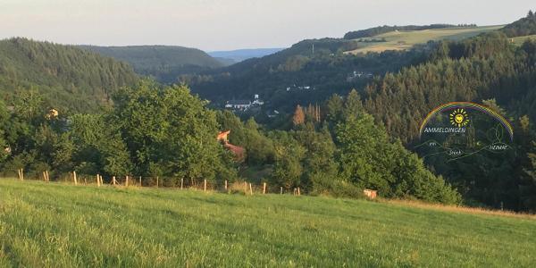Burg- und Stadtblick Neuerburg