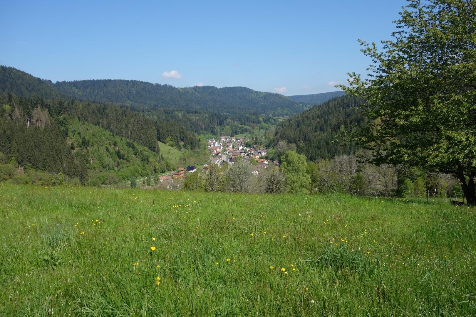 Adelsberg, Blick auf Alpirsbach