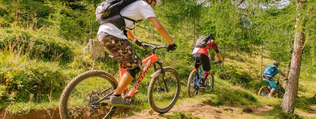 Bike-Trail-Wald