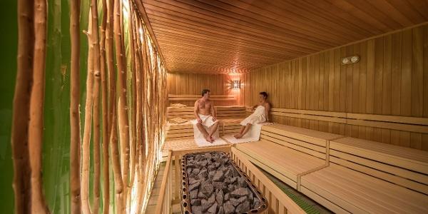 Moosmann-Sauna Bad Elster