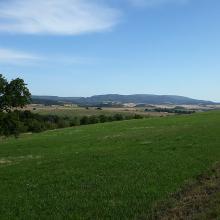 Bei Potzbach - Blick zurück zum Donnersberg