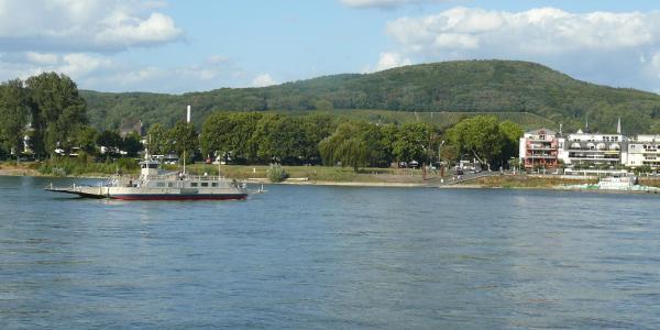 Die Rheinfähre von der Bastei in Bad Godesberg nach Niederdollendorf