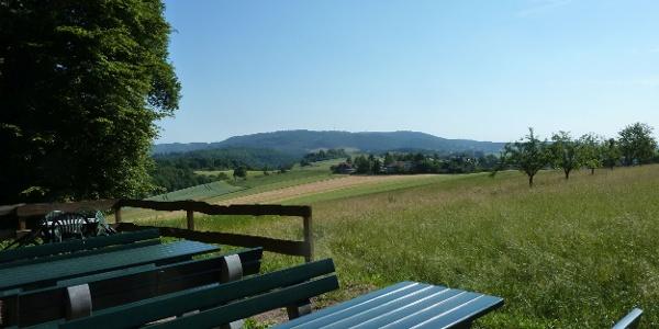 Blick von der Igelborner Hütte zum Donnersberg