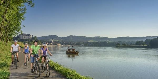 Donauradweg bei Grein