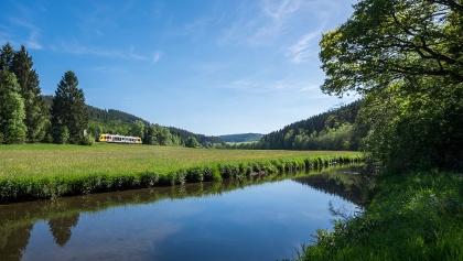 Bahn in der Natur