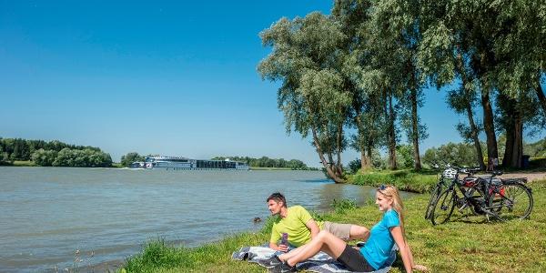 Donaustrand bei Au an der Donau