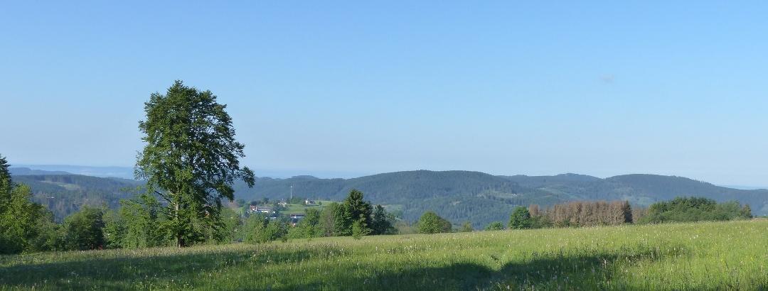 Abfahrt mit Blick auf St. Andreasberg und Südharz