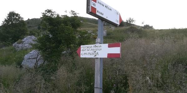 nahe der Marsinska Planina, wieder am Hauptwanderweg SI und an der Via Alpina angekommen