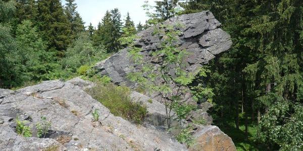Löwenkopf nördliches Felsmassic am Wendelstein in Grünbach