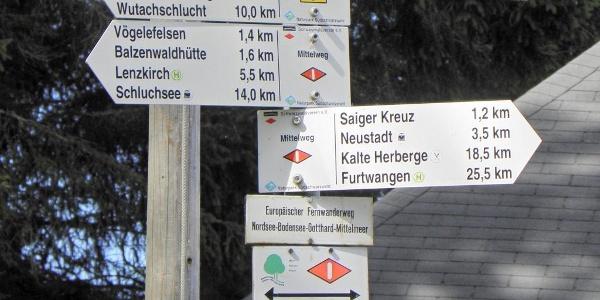 Hochfirst, Treffpunkt der Fernwanderer auf dem Mittelweg und Querweg Freiburg - Bodensee