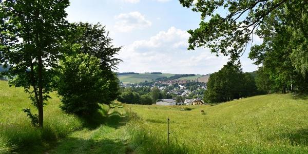 Výhled na Burkhardtsdorf