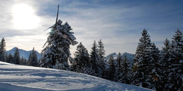 Winterlandschaft Mörlialp